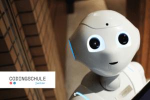 Wie schlau ist ein Roboter
